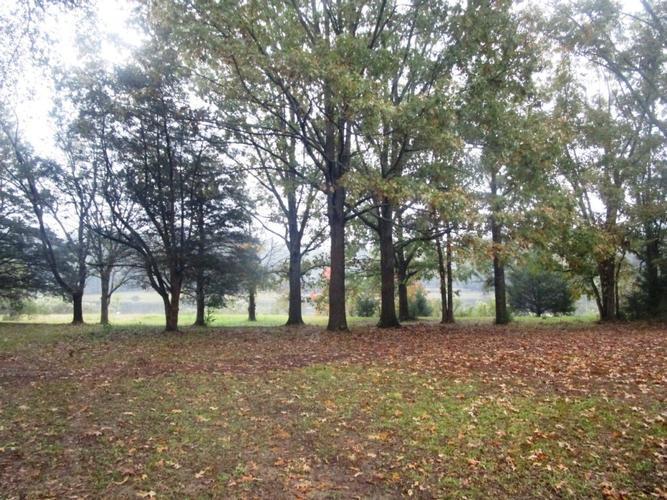 154 Woodlands Ln, Flora, Mississippi