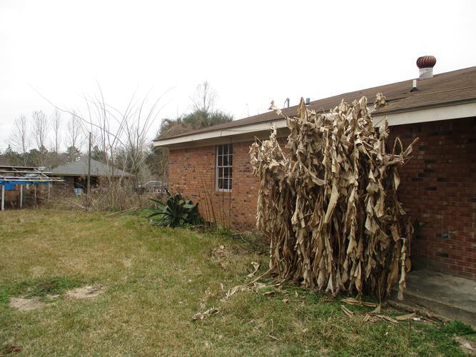 145 R Thompson Road, Lumberton, Mississippi