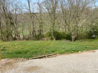 820 State Route 378, Chesapeake, Ohio
