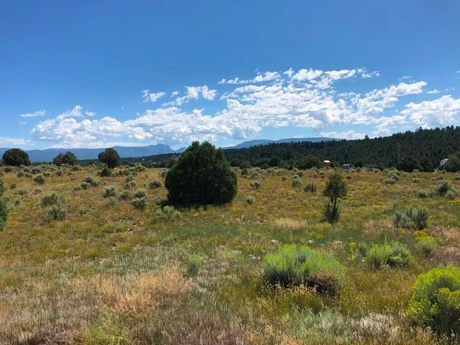9 Overlook Rd, Chama, New Mexico