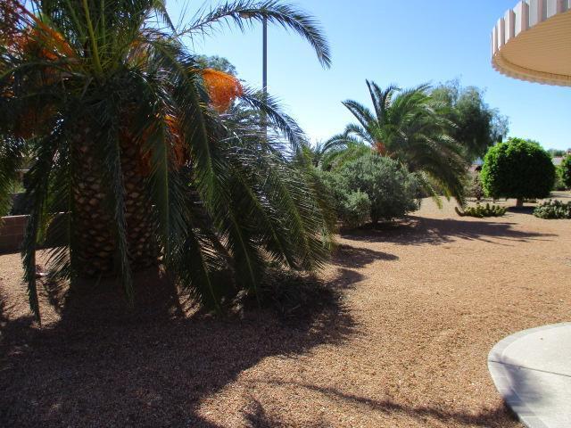 16325 W Tierra Way, Surprise, Arizona