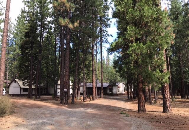 45088 Pine Shadows Rd, Mcarthur, California