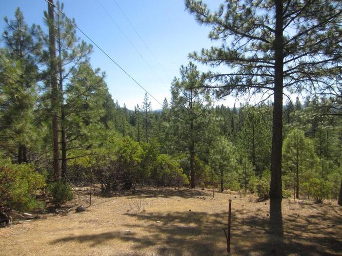 20519 Red Dog Road, Grass Valley, California