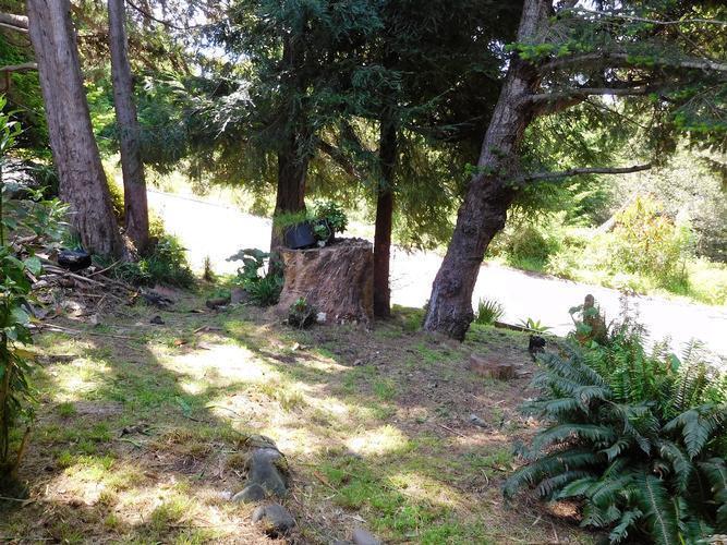 125 Eileen Rd, Shelter Cove, California