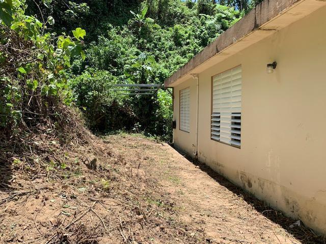 Bo Roncador 603, Utuado, Puerto Rico