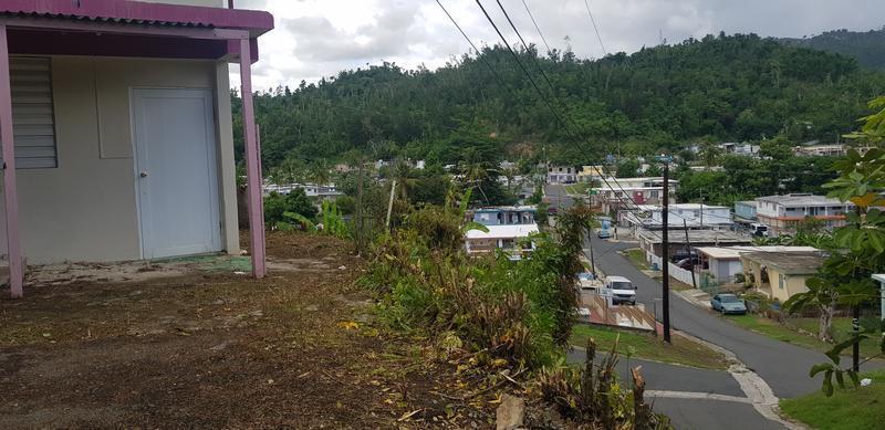 260 Orquidea St Las Carolinas, Caguas, Puerto Rico