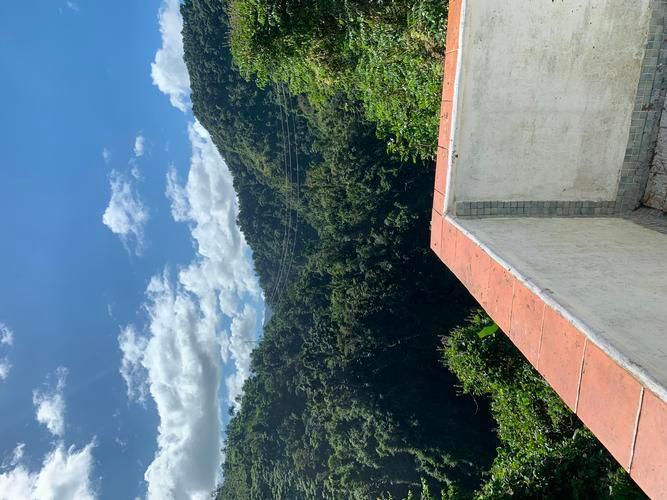 Juan Gonzalez Wd Pr123 Km 42 3, Adjuntas, Puerto Rico
