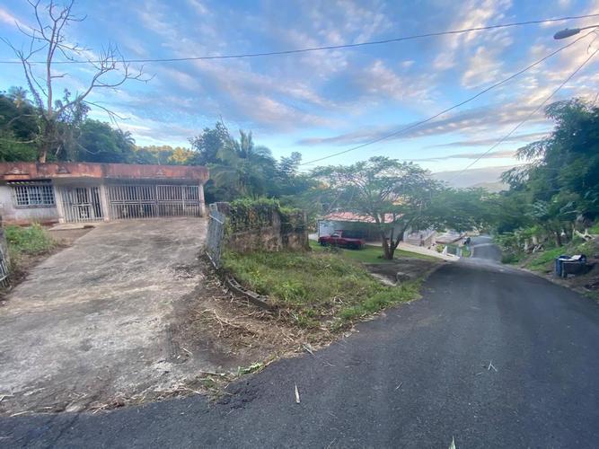 Bo Mabu Sect La Rolina Lot 2, Humacao, Puerto Rico