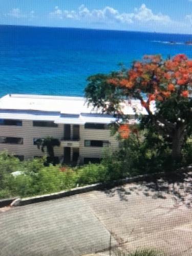 6 F Regatta Pt, St Thomas, Virgin Islands
