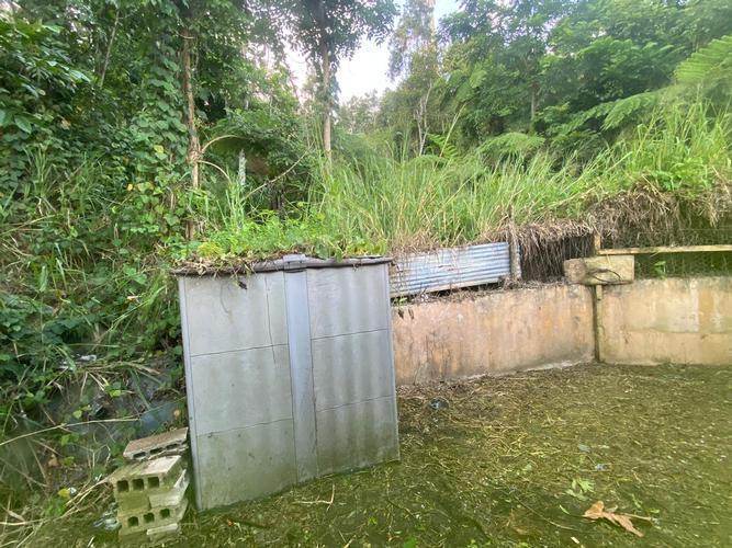 12 Bo Montones, Las Piedras, Puerto Rico