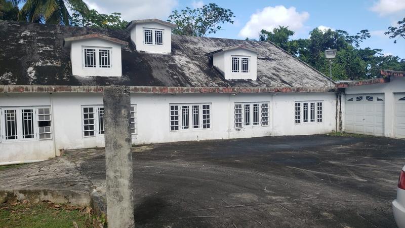D7 C 8 Cols Del Yunque, Rio Grande, Puerto Rico