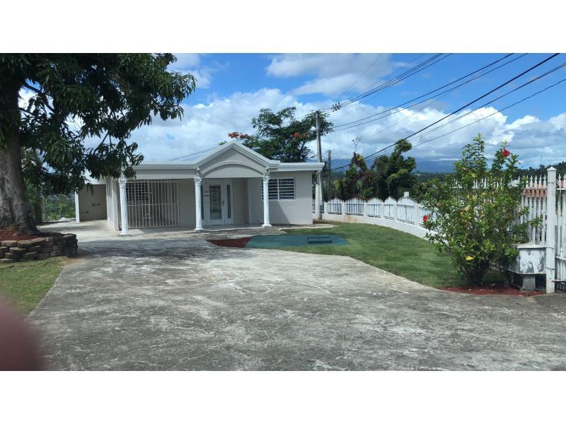 183 Rd Ramal 916 Km 1 9 Cerro Gordo, San Lorenzo, Puerto Rico