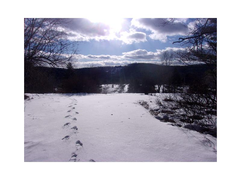 231 Miller Hollow Rd, Lockwood, New York