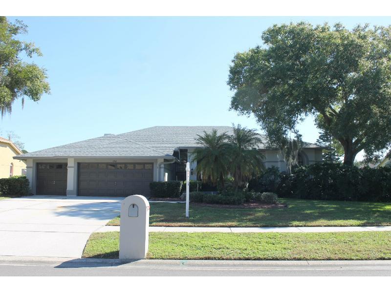 17511 Tally Ho Ct, Odessa, Florida