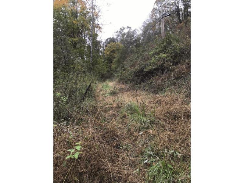 3961 Coxes Creek Rd, Burnsville, North Carolina