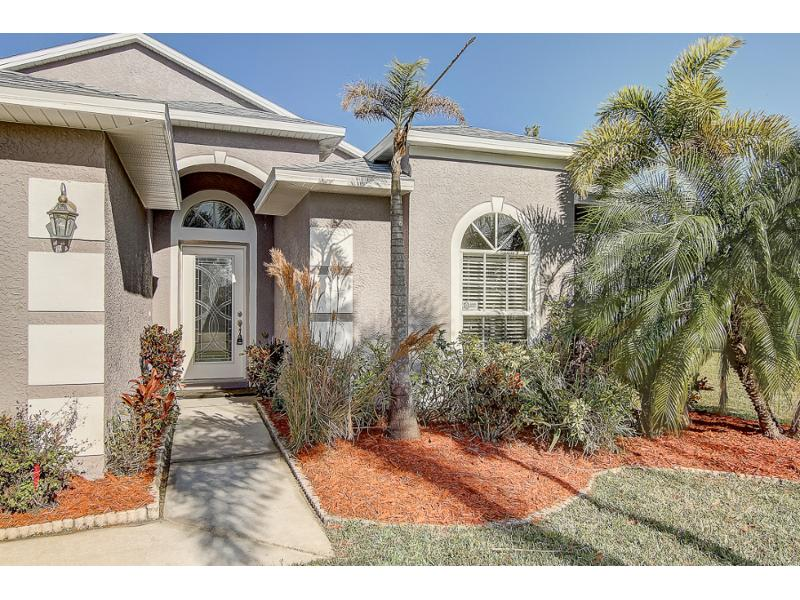 531 Cypress View Drive, Oldsmar, Florida