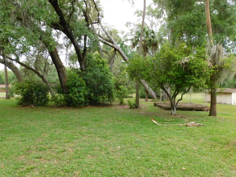 31520 Colby Place, Sorrento, Florida