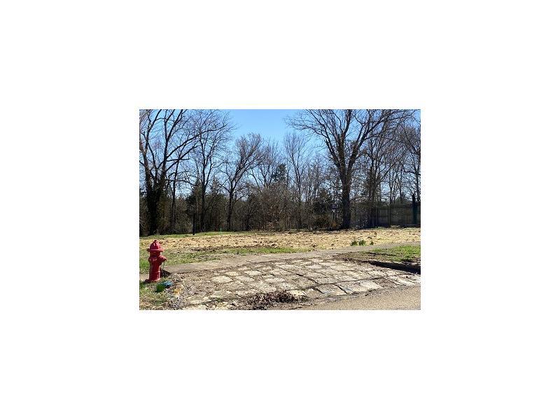 1232 Pine St, Leadwood, Missouri
