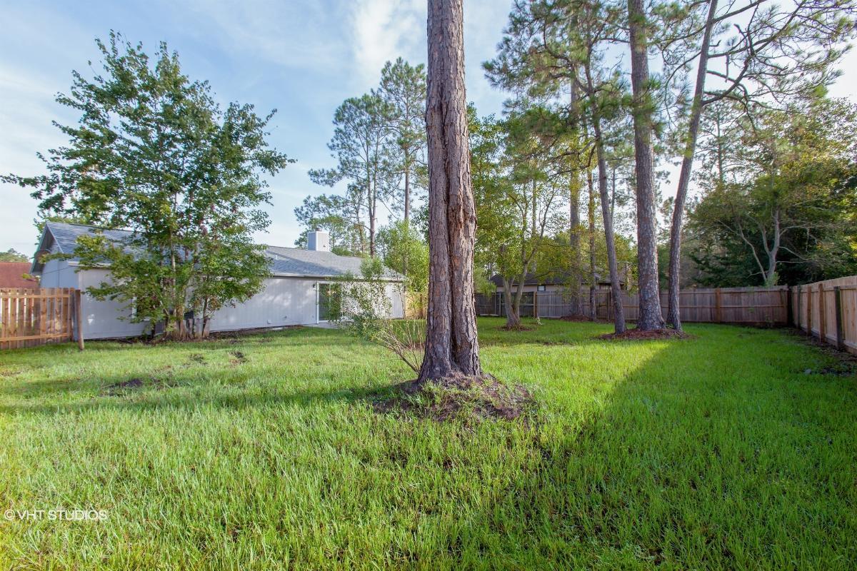 3175 Harlequin Ct, Middleburg, Florida