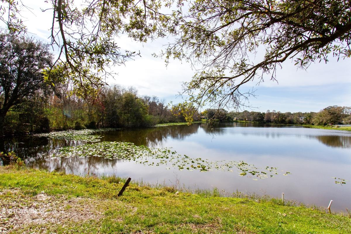 1501 Thistledown Dr, Brandon, Florida